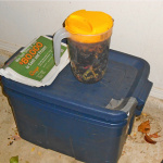 Worm composting bin, a pitcherful of food scraps, and ready bedding material